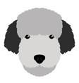 fox terrier avatar vector image