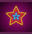 neon star sign vector image vector image