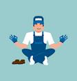plumber yoga fitter yogi service worker vector image