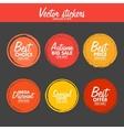 set vintage colorful autumn labels vector image