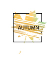 Text autumn on leaf background vector image