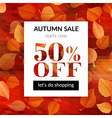 Autumn sale background with alder leaves vector image