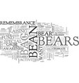 bean bag bears for a cause text word cloud concept vector image vector image