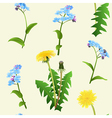 Dandelions and blue flowers seamless pattern vector image
