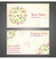 Designer Business Card vector image