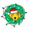labrador in santa hat with christmas lights vector image vector image