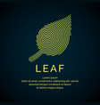 leaf in a linear style vector image vector image