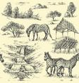 nature seamless pattern zebra and wilderness