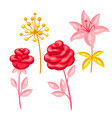 set decorative bright flowers vector image