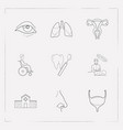 set of organ icons line style symbols with bladder vector image