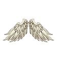 Wing angel animal icon