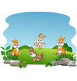 cartoon happy rabbits collection vector image