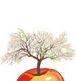 Flowering apple tree in spring vector image vector image