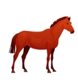 Realistic horse with red coat