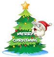 Santa hiding at the back of the christmas tree vector image