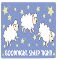 Sheep Tight vector image vector image