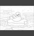 white-coat seal on an ice floe vector image vector image