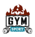 design of gym vector image