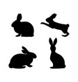 rabbit silhouette sits jumps isolated vector image