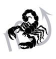 scorpio zodiac horoscope astrology sign vector image vector image