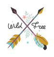 with feathers arrows vector image