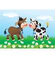 Cartoon kissing cows in love vector image vector image
