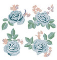 drawing flowers set vector image vector image