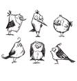 Funny cartoon birds hand drawn vector image