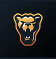 lioness e sport logo icon vector image