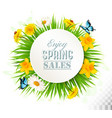 nature spring background with narcissus daisies vector image