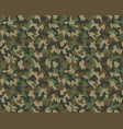 seamless pattern camouflage vector image vector image