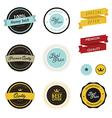 set vintage sale labels badges and stickers vector image