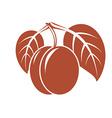Vegetarian organic food simple ripe sweet o vector image vector image