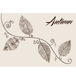 Autumn text with vintage leaves curly branch vector image vector image