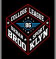 brooklyn urban sport vector image vector image