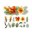 exotic flowers tropical leaves design elements vector image vector image