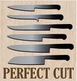 Perfect Cut vector image