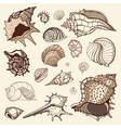 Sea collection Hand drawn vector image vector image