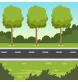 summer green landscape with road and trees nature vector image