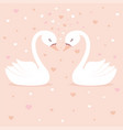 cute swans on pink background vector image vector image