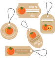 labels with various fruitsfor persimmors vector image vector image