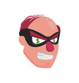 picture of a balding thief wearing a mask with vector image vector image