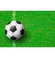 realistic soccer ball on field from above view vector image