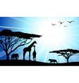 safari silhouettes vector image