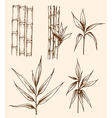 Set of hand drawn vintage bamboo