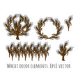 Wheat rye objects isolate decor elements vector image