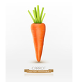 carrot isolated on a white background vector image