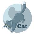 ABC Cartoon Cat3 vector image vector image
