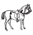 horse-riding vintage vector image