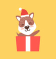 teddy bear in santa hat waving hand from gift box vector image